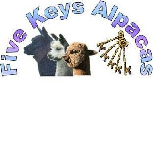 adFiveKeys.jpg